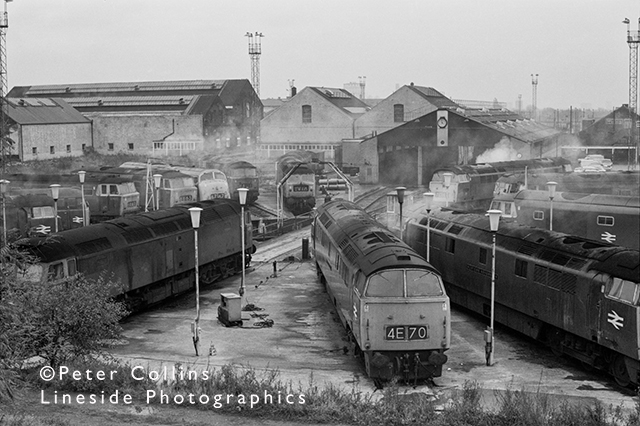 Old Oak Common shed in 1970 ('The Factory'), and a variety of Diesel Electric and Diesel Hydraulic locomotives await their next duty.